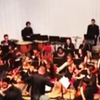 Sandwell Youth Symphony Orchestra perform at Shireland Collegiate Academy